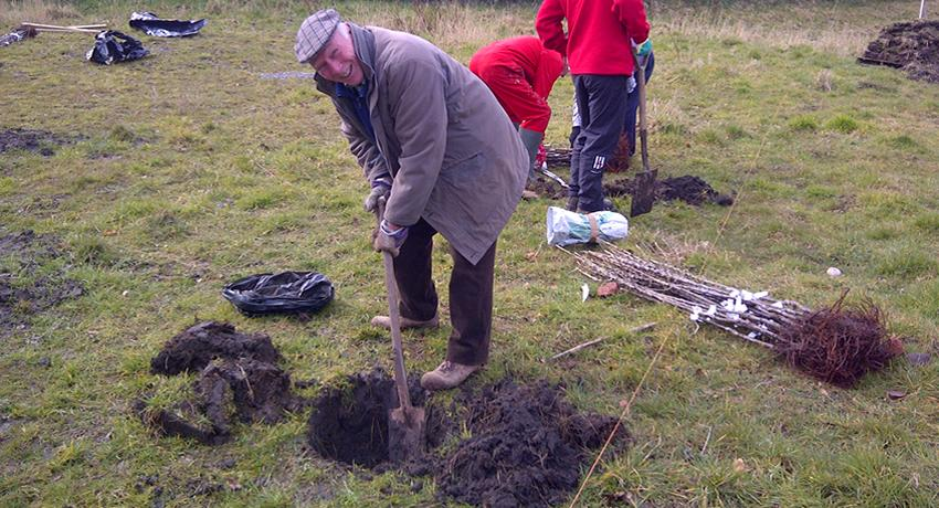 John Earp from Wallasey Rotary planting apple trees at the Fruit Routes EKG orchard