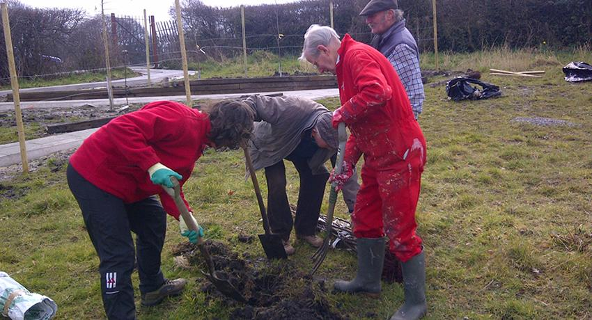 Wallasey Rotarians plant fruit trees at the Fruit Routes EKG orchard