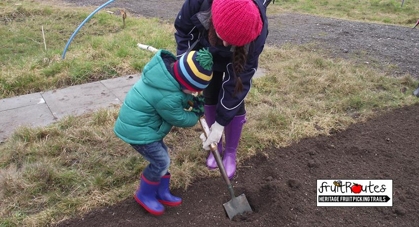 Families planted the fruit trees together