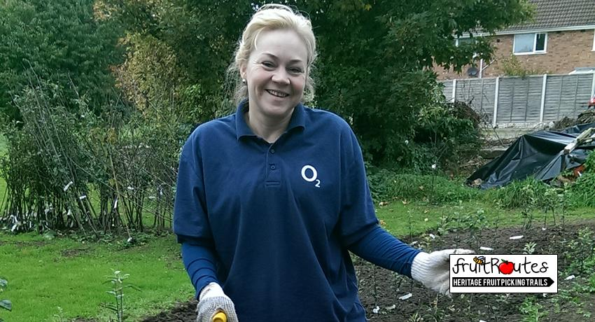 O2 Telefonica CSR Team member at the Fruit Routes Lyndale Orchard